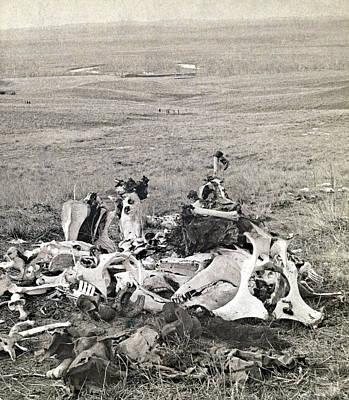 Little Bighorn, 1876 Art Print