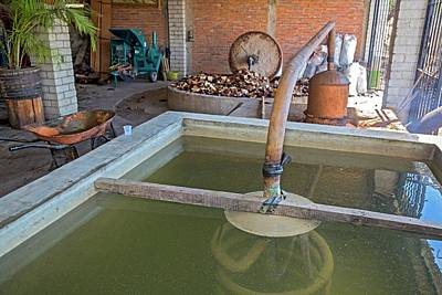 Mezcal Distillery Art Print