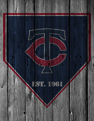 Diamonds Photograph - Minnesota Twins by Joe Hamilton