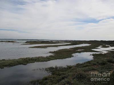 Photograph - Peninsula Los Torunos by Chani Demuijlder