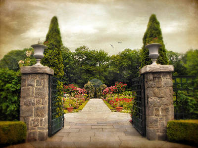Planter Photograph - Rose Garden by Jessica Jenney