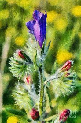 Spring Wild Flower Art Print by George Atsametakis
