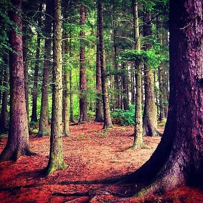 Landscapestyles Photograph - #stirling #scotland #scotlandlover by Colin Logie