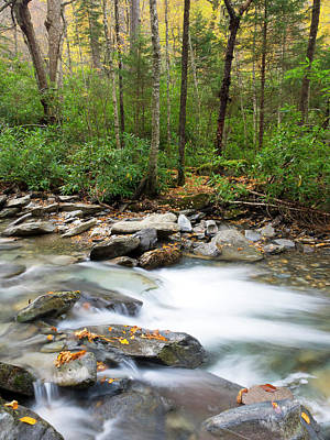 Tennessee, Great Smoky Mountains Art Print