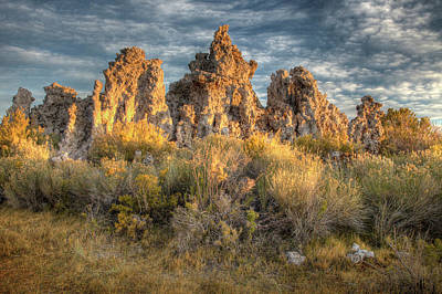 Carter Photograph - Usa, California, Mono Lake by Jaynes Gallery