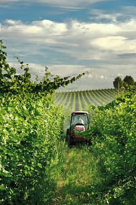Vintner Photograph - Usa, Washington, Walla Walla by Richard Duval