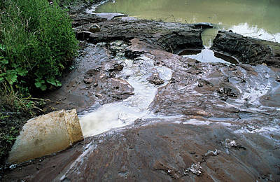 Water Pollution Art Print by Robert Brook/science Photo Library