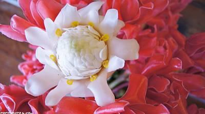 Flower For You  Art Print by Gornganogphatchara Kalapun