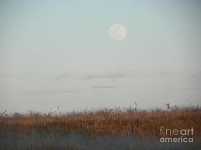 Beach Photograph - 932 D953 Salisbury Beach State Reservation by Robin Lee Mccarthy Photography