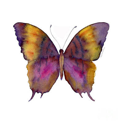 Background Painting - 99 Marcella Daggerwing Butterfly by Amy Kirkpatrick