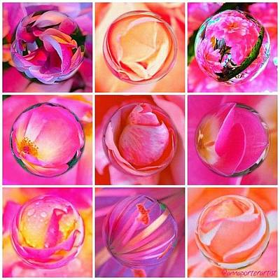 Apple Wall Art - Photograph - #9pinkribbons Digital Collage For Breast Cancer Awareness by Anna Porter