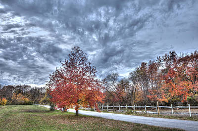 A Backroad In The Rural Countryside Of Maryland During Autumn Art Print