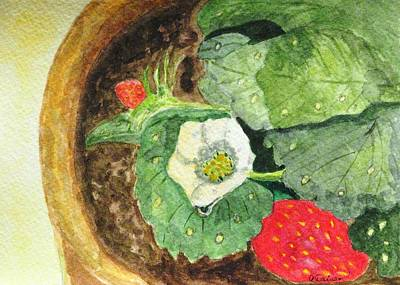 Art Print featuring the painting A Balcony Strawberry Plant by Angela Davies