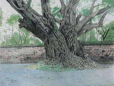 A Banian In Literature Temple Hanoi Vietnam Art Print by Wilfrid Barbier