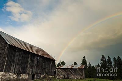 Photograph - A Barn O'gold by Cheryl Baxter