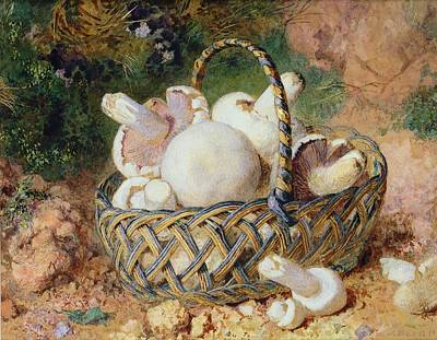 Mushroom Drawing - A Basket Of Mushrooms, 1871 by Jabez Bligh