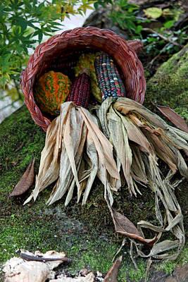 Photograph - A Basketful II by Suzanne Gaff