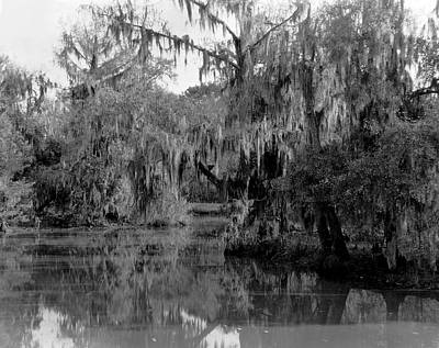 Wetlands Photograph - A Bayou Scene In Louisiana by Underwood Archives