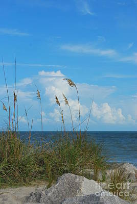 Photograph - A Beautiful Day At The Beach by Bob Sample