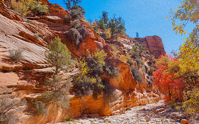 Peacock Feathers - A Beautiful Gorge at Zion National Park by John M Bailey