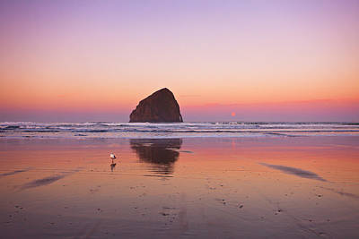 Central Oregon Coast Photograph - A Beautiful Morning by Darren  White