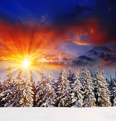 A Beautiful Sunset In The Winter Art Print by Boon Mee