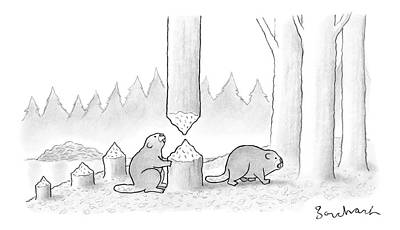 Beaver Drawing - A Beaver Chewed Through A Tree Trunk by David Borchart