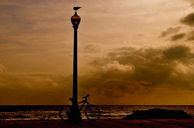 Photograph - A Bird And A Bike by Joe  Burns
