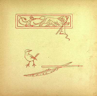 Children Book Illustration Drawing - A Bird And A Feather And A Mouse Shooting At A Lion by English School