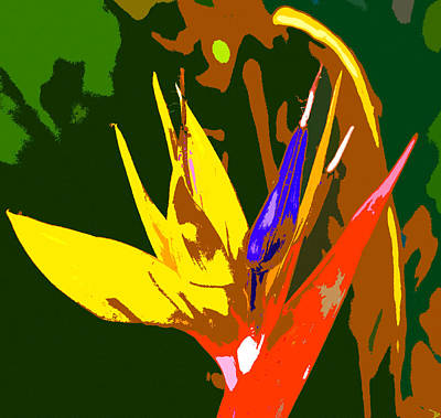 Blooming Digital Art - A Bird In Paradise by David Lee Thompson