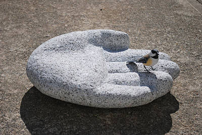 Sculpture - A Bird In The Hand by Leslie Dycke