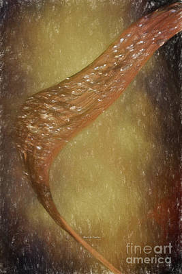 Dried Drawing - A Blade Of Autumn Leaf by Angela A Stanton