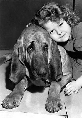Bloodhound Photograph - A Bloodhound's Best Friend by Underwood Archives
