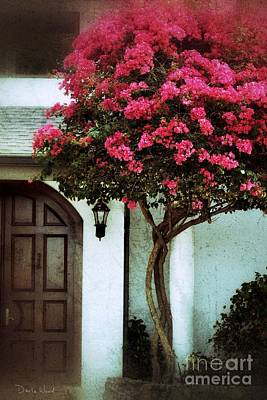 Digital Art - A Bougainvillea Welcome by Darla Wood