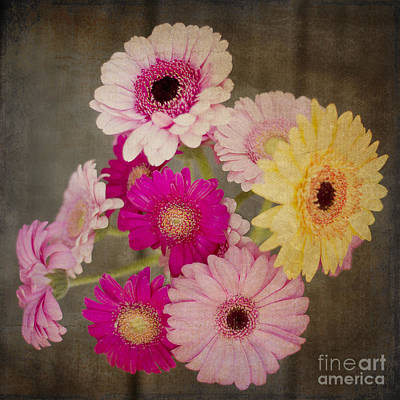 A Bouquet Of Gerbera Daisies Art Print