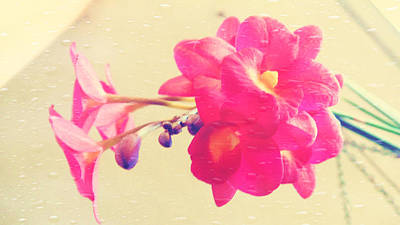 Photograph - A Bouquet Of Magenta Orchids by Xueyin Chen
