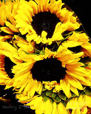 A Bouquet Of Sunshine  Art Print by Nancy E Stein