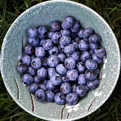 Photograph - A Bowl Of Blue by Ronda Broatch