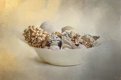 Pine Cones Photograph - A Bowl Of Holiday Bounty by Jai Johnson