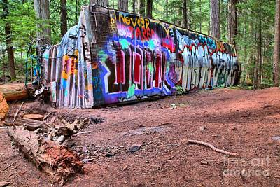 Photograph - A Box Car In The Forest by Adam Jewell