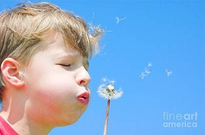 Blow Photograph - A Boy And A Dandelion by Michal Bednarek