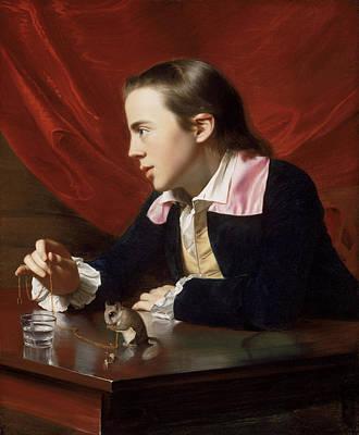 Singleton Painting - A Boy With A Flying Squirrel. Henry Pelham by John Singleton Copley