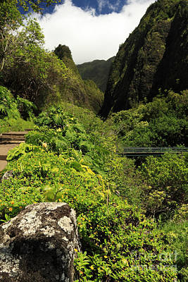 Photograph - A Bridge To The Iao Needle by James Eddy