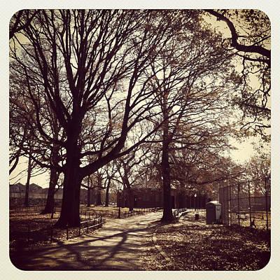 Brooklyn Photograph - A Brooklyn Park by Frank Winters
