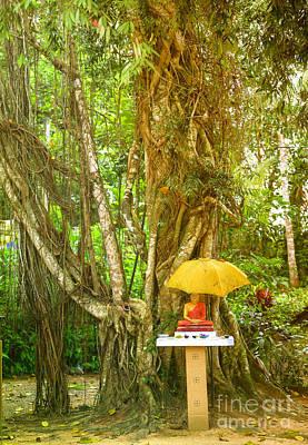 a Buddha shrine under a Bothi tree Art Print by Regina Koch