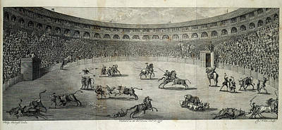 Bull Photograph - A Bull Fight by British Library