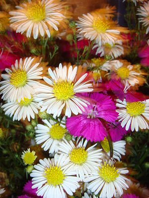 Photograph - A Bunch Of Flowers by Mr Photojimsf