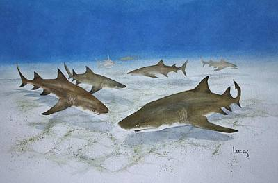 Big Teeth Painting - A Bushel Of Lemon Sharks by Jeff Lucas