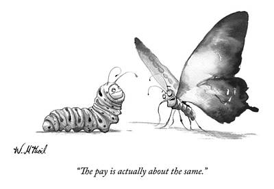 Promotion Drawing - A Butterfly Talks To A Caterpillar by Will McPhail