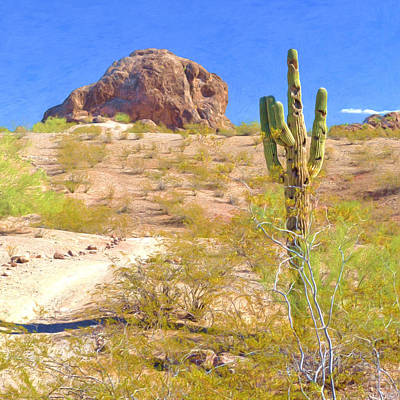 Digital Art - A Cactus In The Arizona Desert by Digital Photographic Arts